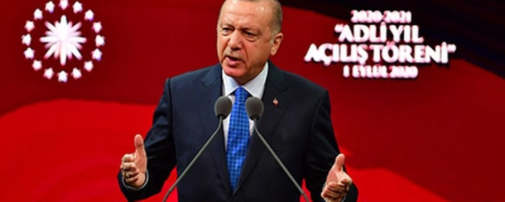 Эрдоган упрекнул Макрона внезнании истории