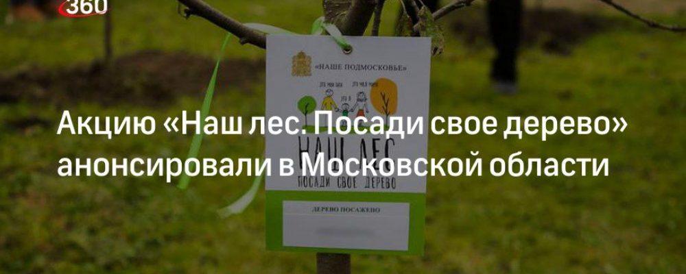 Акцию «Наш лес. Посади свое дерево» анонсировали в Московской области