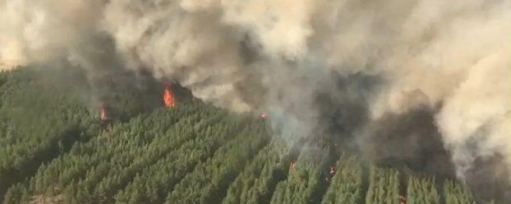 Пожары подРостовом привели ктрагедии