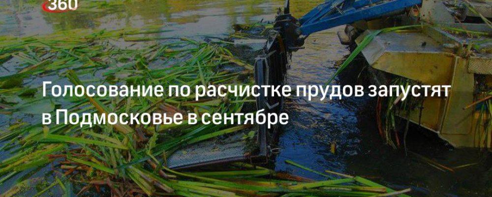 Голосование по расчистке прудов запустят в Подмосковье в сентябре