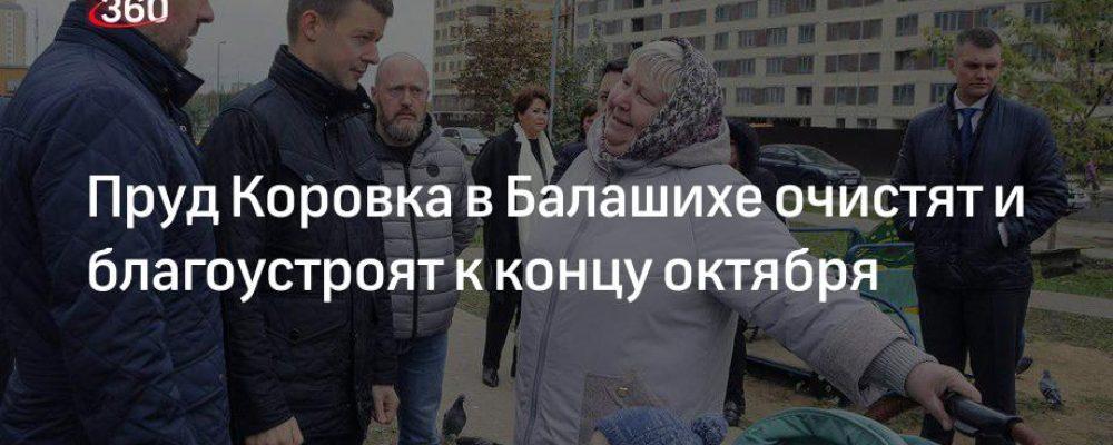 Пруд Коровка в Балашихе очистят и благоустроят к концу октября