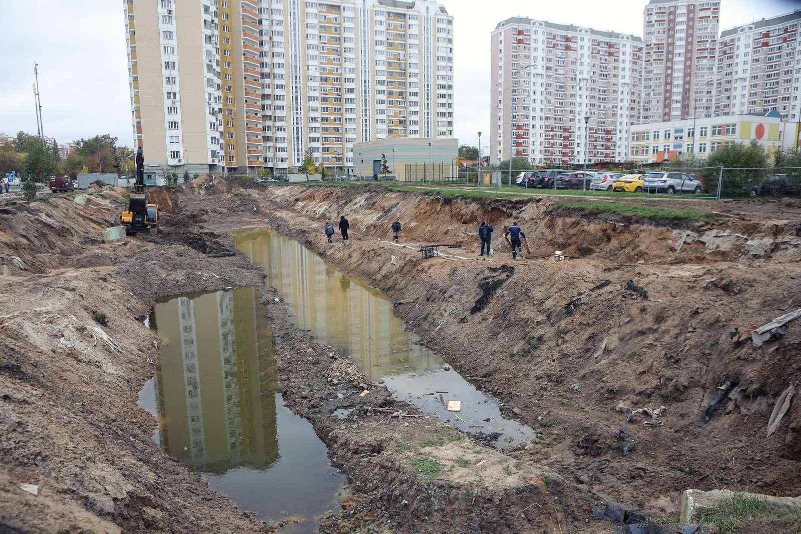Пруд Коровка в Балашихе очистят и благоустроят к концу октября | Изображение 2