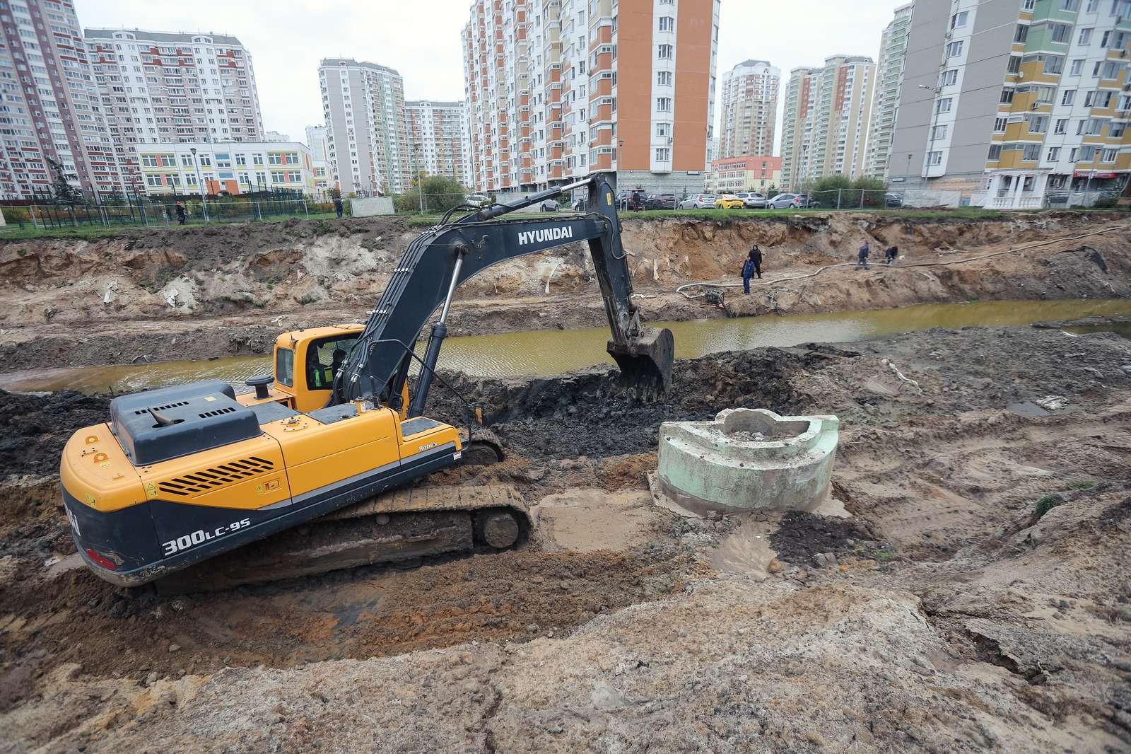 Пруд Коровка в Балашихе очистят и благоустроят к концу октября | Изображение 3